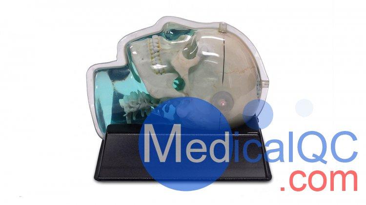 CIRS 603A头部模体,CIRS 603A头部MRI模体