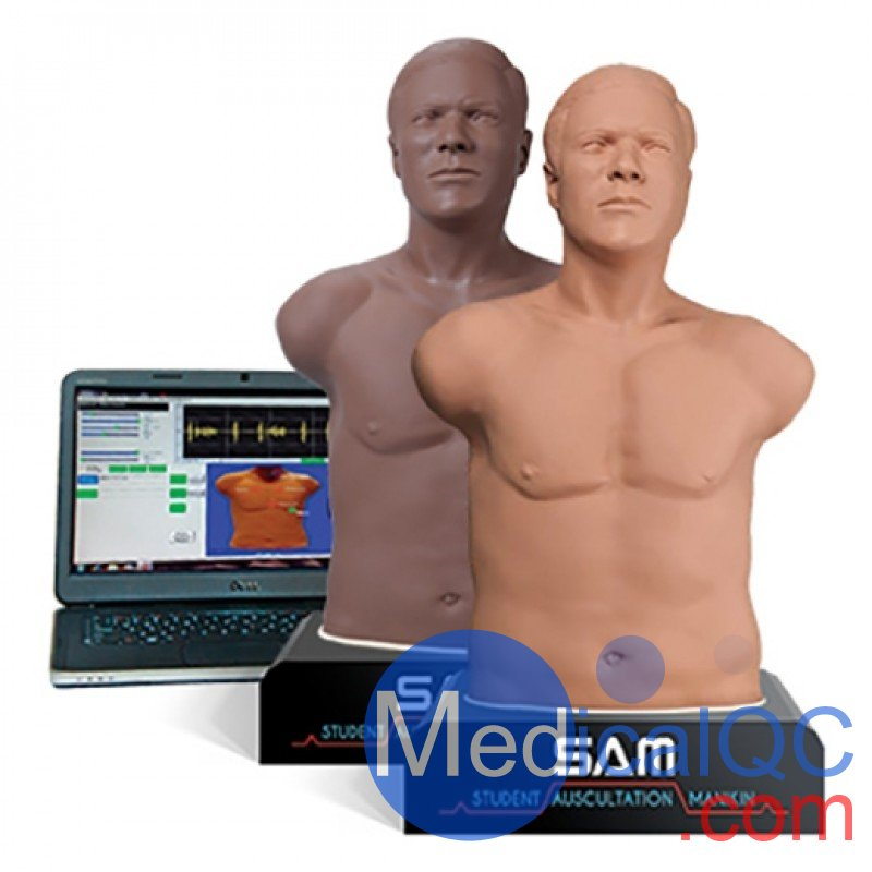 SAM 3G学生听诊人体模型,SAM 3G听诊模型